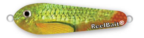 -921 - GreenRed Minnow 6 oz Saltwater Spoon